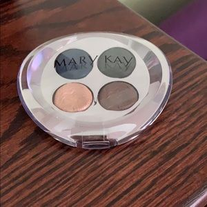 Mary Kay Pure Dimensions palate